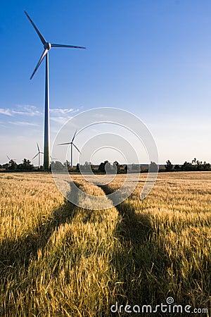 Wind turbines on a field