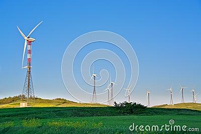Wind turbines on green grass