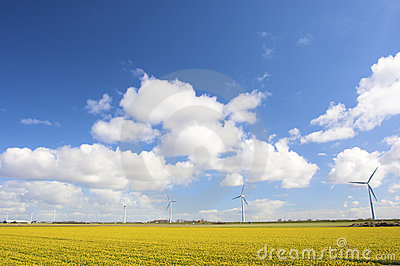 Wind turbines in Holland in a field with flowers