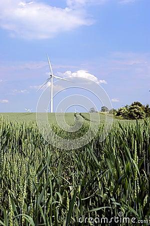 Free Wind Turbines In Green Field Stock Photos - 2554483