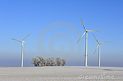 Wind turbines and trees in winter