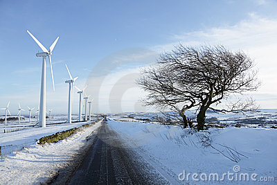 Wind turbines in winter