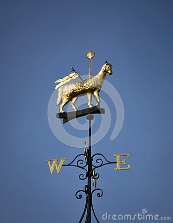 Free Wind Vane Royalty Free Stock Photo - 24903165