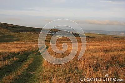 Winding lane across farmland
