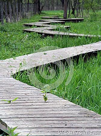 Winding path