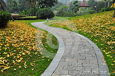 Winding Path in Autumn Park