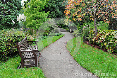Winding Path in a Green Park