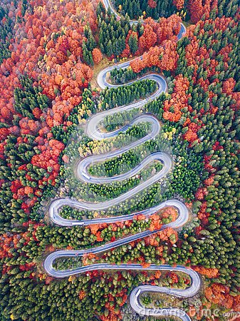Free Winding Road From High Mountain Pass, In Autumn Season, With Orange Forest Stock Image - 130497341