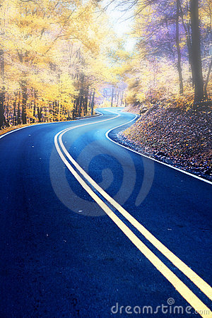 Free Winding Road In Morning Fog Stock Photos - 6180773