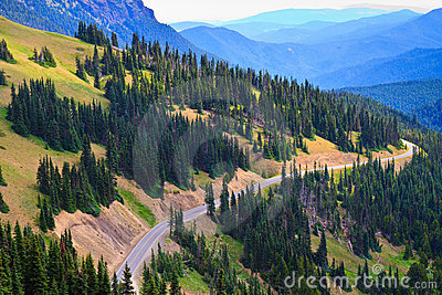Winding Road, Olympic National Park, Washington