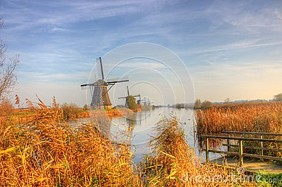 Windmill in Countryside kinderdijk