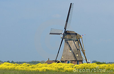Windmill from Holland 2