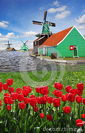 Free Windmill In Holland With Canal Stock Photo - 30811020
