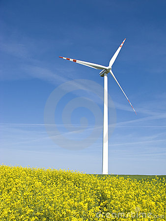 Free Windmill In Yellow Field Royalty Free Stock Images - 5165399