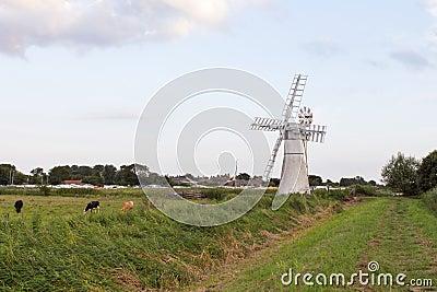 Norfolk Broads countryside uk
