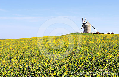 Windmill in Normandy