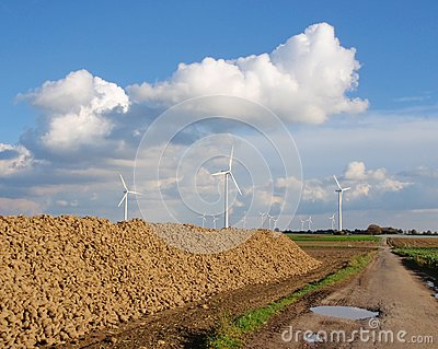 Windmill park with stack of sugar beet