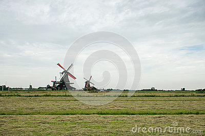 Windmills and the field at Zaanse Schans, Holland