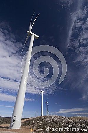 Windmills lined