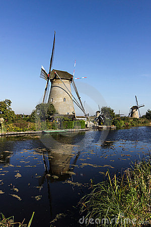 Windmills in the morning