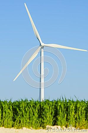 Windmills to generate wind power
