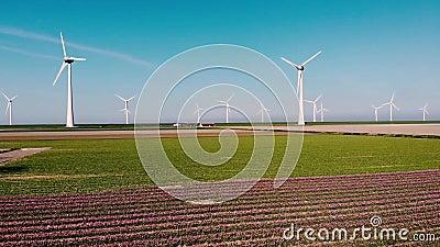 Windmolenparkturbines, rode tulpenbloem in Nederland, windmolen met bloemen groene energie stock video
