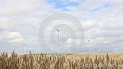 Windmolens in Polen stock footage
