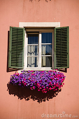 Free Window And Flowers Royalty Free Stock Images - 8456889