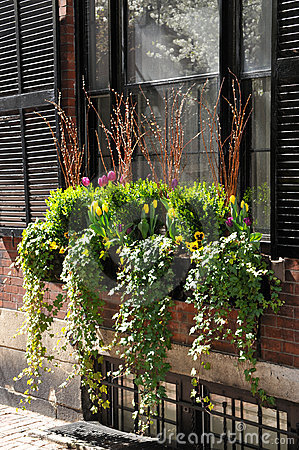 Window Box Flower Arrangement