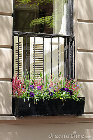 Window box with heather flowers and pansies