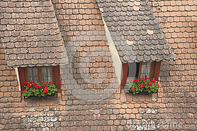 Window on building roof with flowers