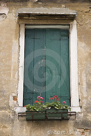 Window with closed shutters and flowers.