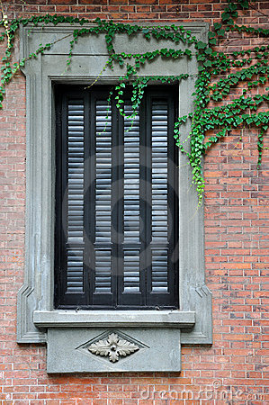 Window with exquisite engrave and vine plant