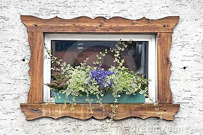 Window and Flower