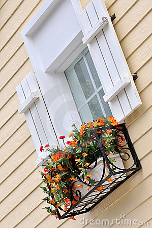 Window with flower of colored architecture