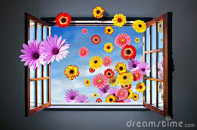 Window of Flowers