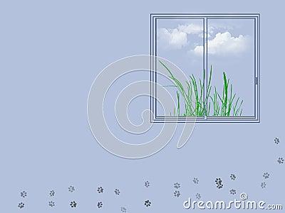 Window illustration