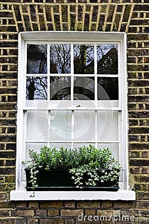 Window in London
