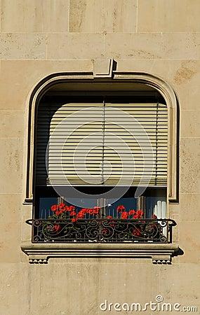 Window, shutters, flowerbox
