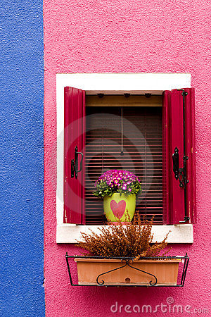 Window, shutters and flowers