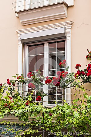 Free Window With Roses Stock Photos - 56991013