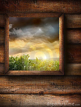 Window with wood grain background