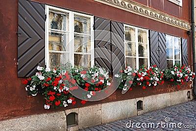 Windows of antique house