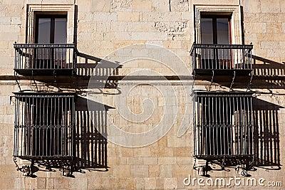 Windows of the Guzmanes palace