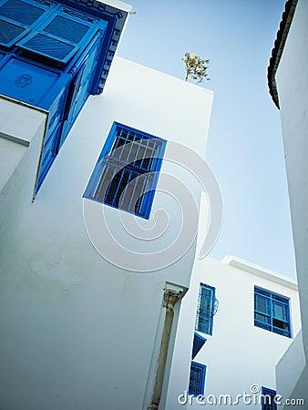 Windows in Sidi Bou Said