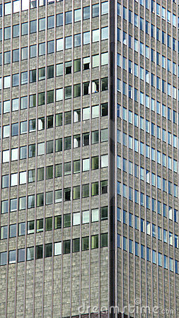 Windows on skyscraper