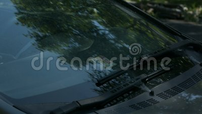 Windshield cleaner turning on stock footage