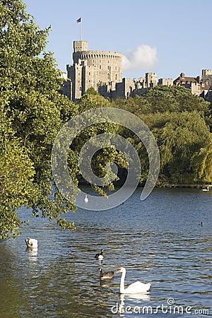 Free Windsor Castle Royalty Free Stock Image - 666356