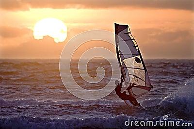 Windsurfer sailing sunset