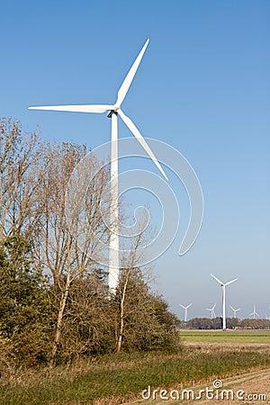 Windturbines in Dutch rural landscape